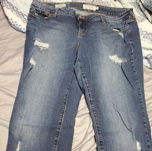 Skinny Torrid Ripped Jeans